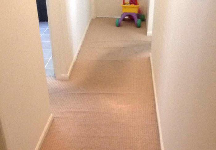Carpet Cleaning Deakin