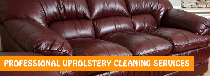 Amazing Leather Cleaning Services