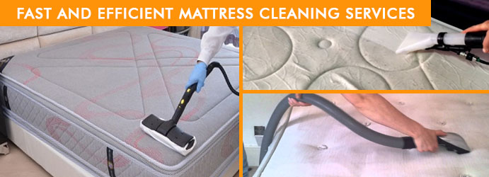 Experts Mattress Cleaning Services Lillico