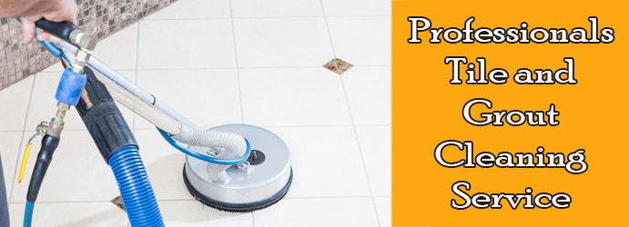 Professionals Tile and Grout Cleaning