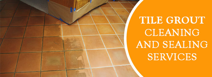 Tile Grout Cleaning and Sealing  Long Forest