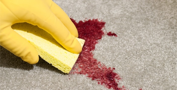 Get Rid of Carpet Blood Stain Canberra