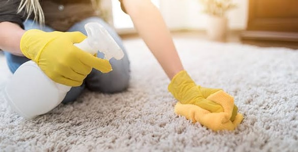 Carpet Stain Removal Services