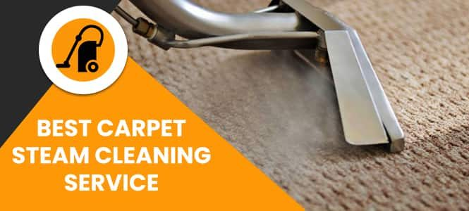 Best Carpet Steam Cleaning Service