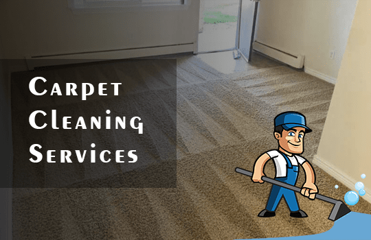 Carpet Cleaning Services Holder